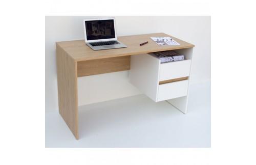 Računalniška miza LINI